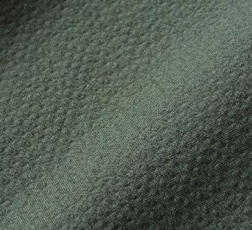 エディクログリーン服の生地